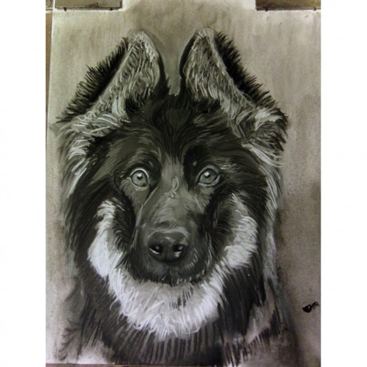 Charcoal Drawing Commission Pet Portrait