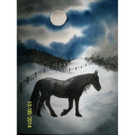 A Black Horse at Night