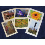 Greeting Card Set Flowers & Landscapes