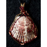Wire Wrapped Calico Scallop Shell Pendant