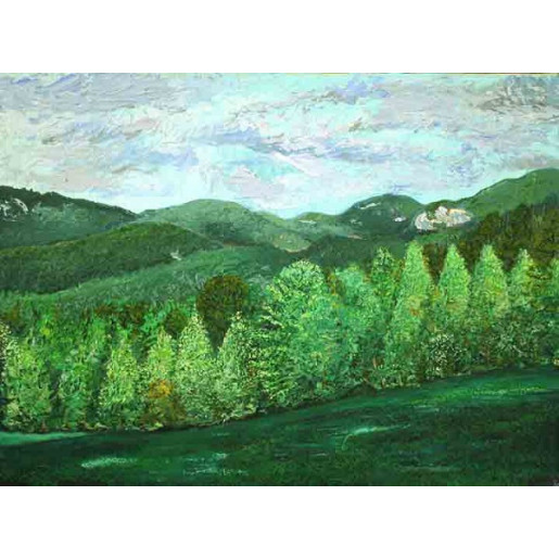 A View of Hogback Mountain from Don Span's I
