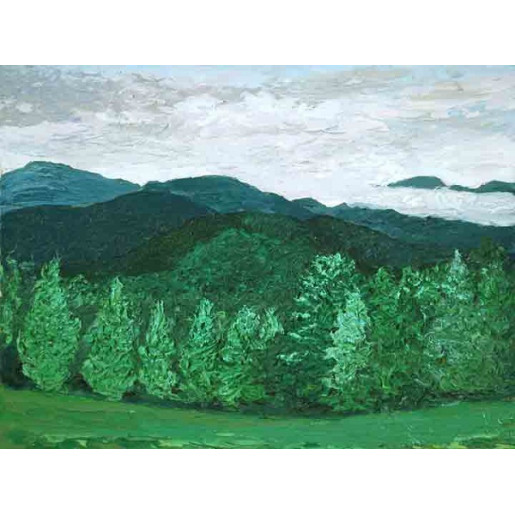 A View of Hogback Mountain from Don Span's II