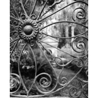 Wrought Iron Gate Charleston South Carolina