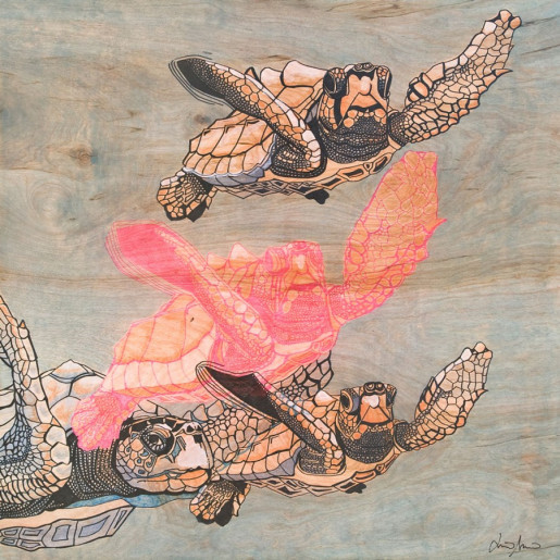 Sea Turtles (Fine Art Print)