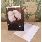 King Cotton Notecards